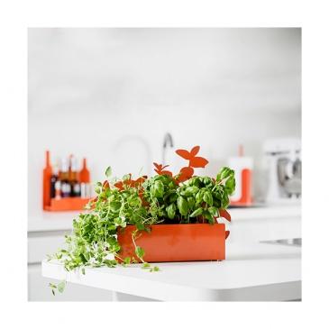 Osłonka do ziół Sagaform Kitchen pomarańczowa