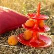 Patera Koziol Babell XS pomarańczowo-czerwona KZ-3181633