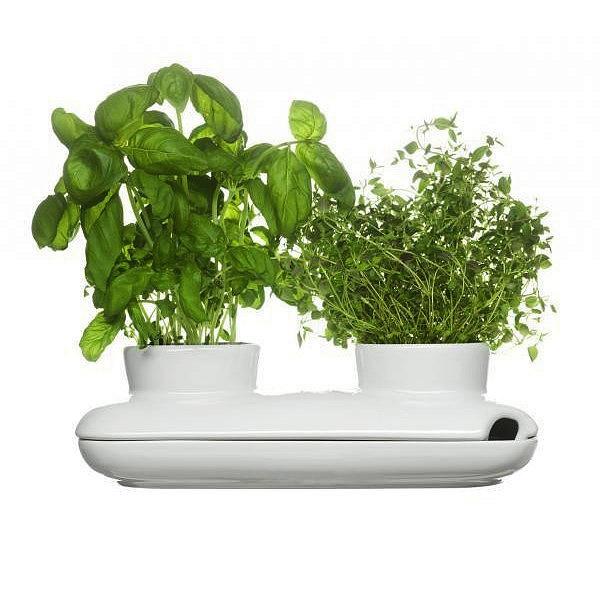 Podwójny wazon na zioła Sagaform Herbs & Spices SF-5015859