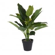 Roślina w donicy III 45cm Intesi