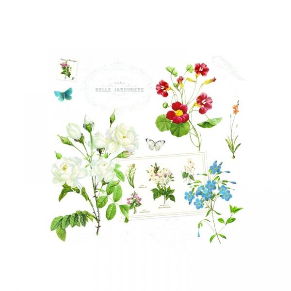 Serwetki deserowe 20 szt. 33cm Nuova R2S Napkins polne kwiaty 414 NATU