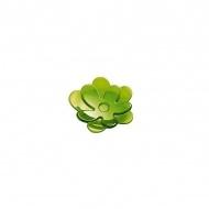 Spodek A-Pril 11,2 cm zielony
