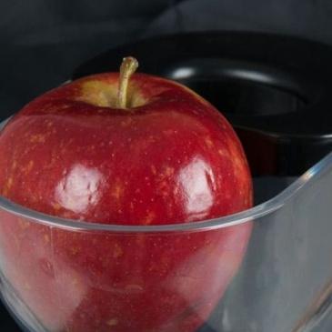 Wyciskarka wolnoobrotowa ELDOM PJ450 ślimak BPA FREE